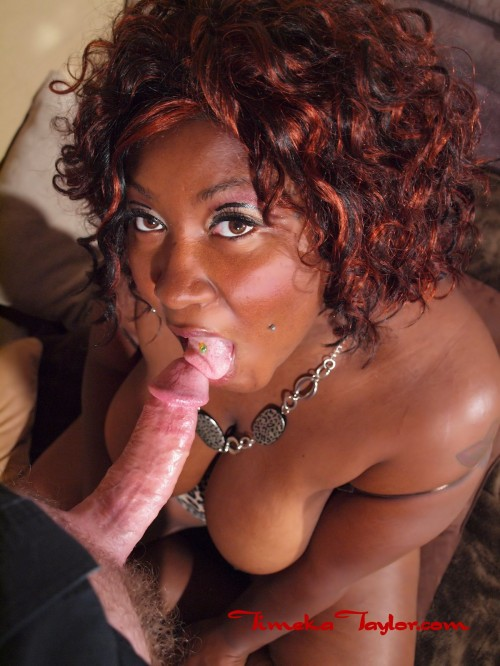 Ebony coed, Timeka Taylor, is giving head to white cock.